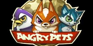 Angry Animaux